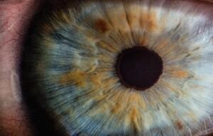 Eye - Diabetes